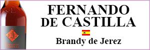 Fernando de Castilla
